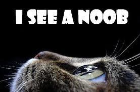 File:I See a noob.jpg
