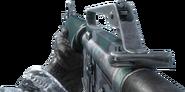 M16 Warsaw BO