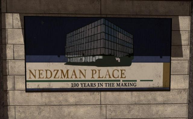 File:Nedzman Place Hardhat MW3.png