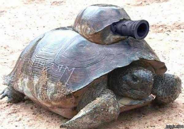 File:Turtletank.jpg