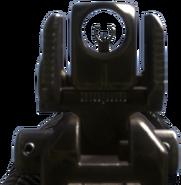 SA-805 iron sights CoDG