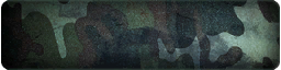 File:Camouflage Green 1 Calling Card BOII.png