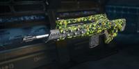 Integer Camouflage