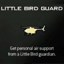 File:Modern-warfare-3-killstreak-little-bird-guard.jpg