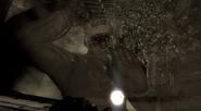 Dimitri's Death Project Nova BO