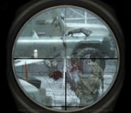 Gibbing Zakhaev One Shot One Kill