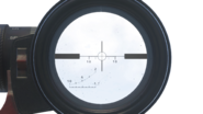 Lynx scope overlay AW