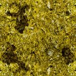 Hidden Camouflage 1 CoDG