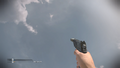 P226 Flash Supressor.png