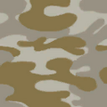CoD4 Desert Camouflage.png