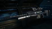 Locus Gunsmith model Rapid Fire BO3