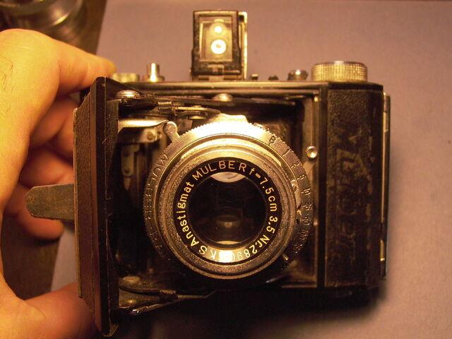 File:Z99 Semi Mulber ll 002.jpg