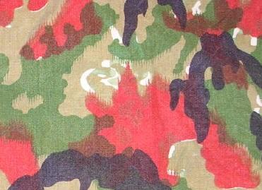 File:Alpenflage 1.jpg