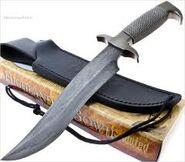 Violet's knife