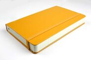 Moleskin-2013-colored diary yellow