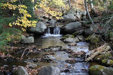 Brooks-streams 2