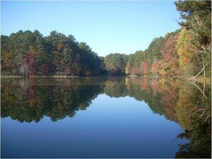 Lake image 1
