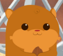 Larry the Hamster