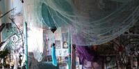 Shiloh/Shiloh's Bedroom