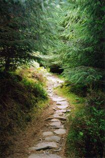 Mountain Path Stock by MirandaRose Stock