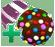 Colourbomb striped (trans)