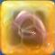 Purple jelly(h1)