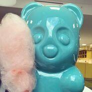 Bears love candy floss