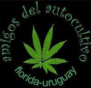 Florida Uruguay