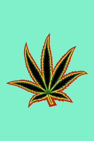 File:Cannabis leaf.jpg