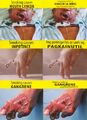 PH tobacco packaging graphic warning labels.jpg