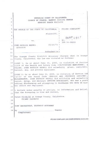 File:2006-06-06-felony-complaint-image-0003.png