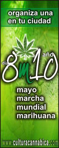 File:2010 GMM Spanish.jpg