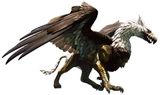 Dragons Dogma Griffin
