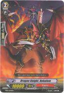 TD02-004EN - Dragon Knight, Nehalem
