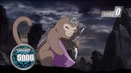 Flask Marmoset (Anime-AC-NC)