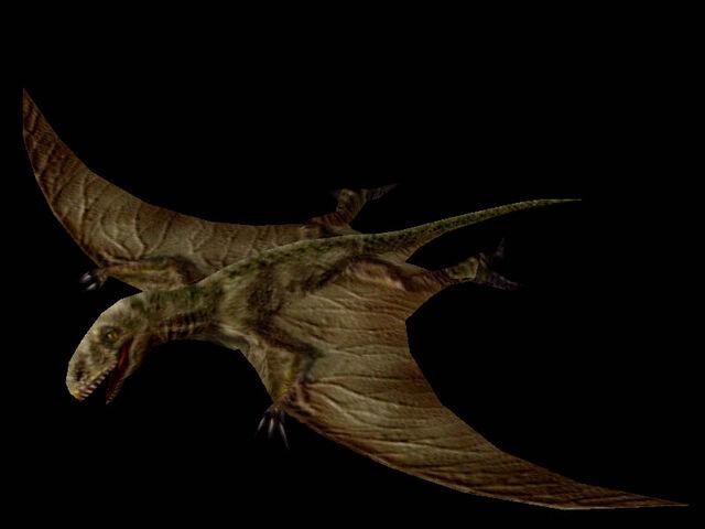 File:Dimorphodon.jpg