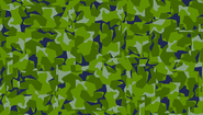 1961 disruptive camouflage