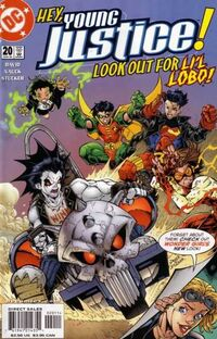 Young Justice 20