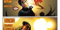 Robin (148)