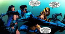 NightwingSuitcomment