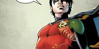 Robin Uniform (Prime Earth)