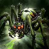 Poisonous Spider