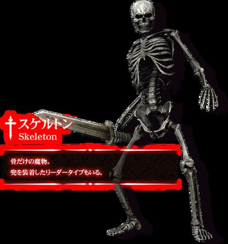 File:Skeleton Bio JP.png