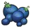 File:Berry-icon.png