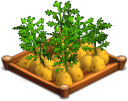 File:Potatoes 02.png