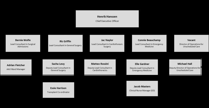 Holby City Hospital Organisation Chart
