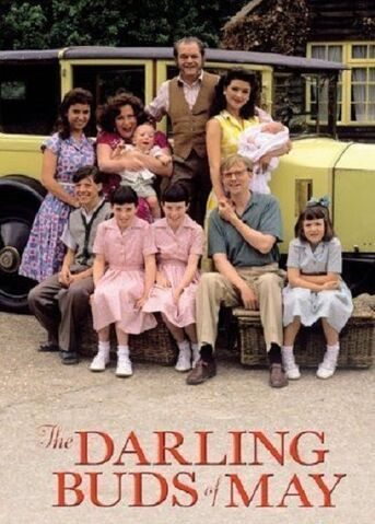 File:02. THE DARLING BUDS OF MAY (TV) (1991).jpg