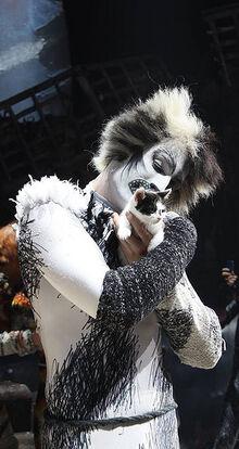 Alonzo James Darch Kitten 1