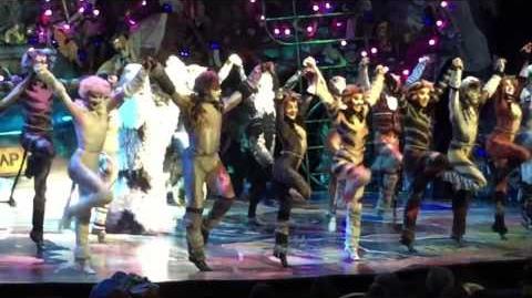 Mr Mistoffelees - CATS The Musical - Oasis of the Seas - 2016 - Matt Landel