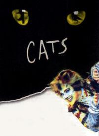 Rumple Cats UK Tour 2003 advert
